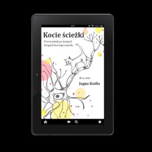 Kocie ścieżki - okładka ebooka