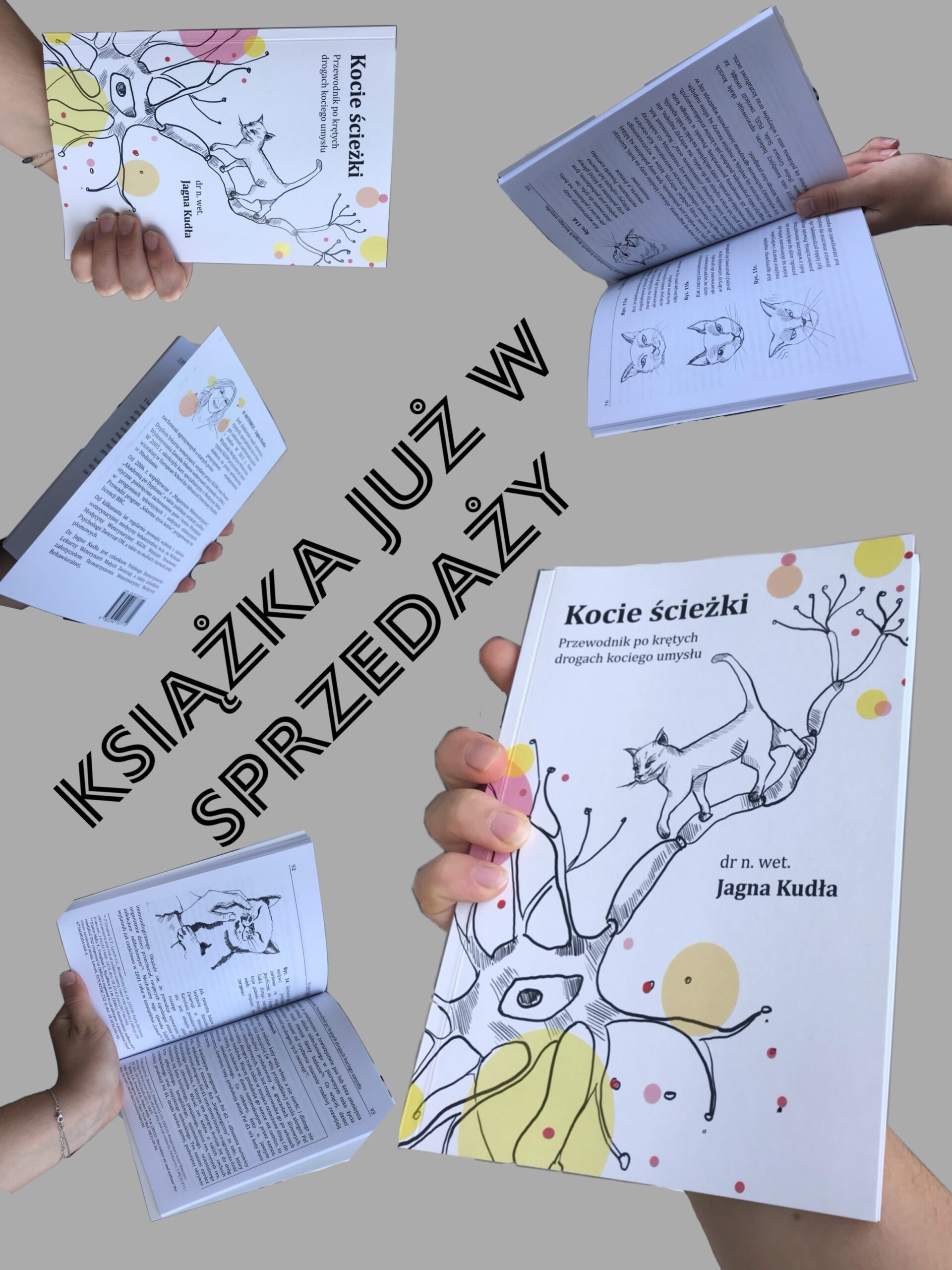 Jagna Kudła - kup książkę